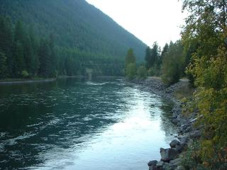 South Fork of the Flathead River, a 2 minute walk from the cabins