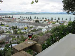 Bellbird  Bed and Breakfast in the heart of Napier