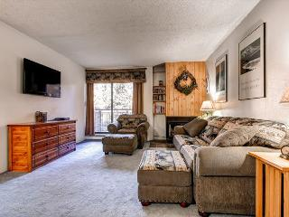 Trails End Living Room Breckenridge Ski-in/Ski-Out Lodging Condo