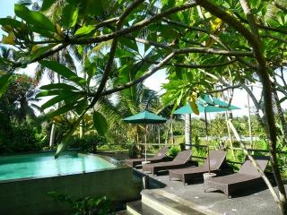 Garden Apartment 1BR, 1BA, 1 Living/Kitchenette, Ubud