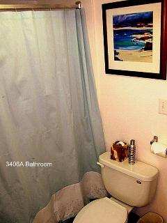 A-Unit bathroom tub & toilet