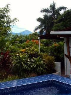The lush garden makes the pool area very private, though there is some view toward the mountains.