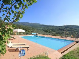 Castagnatello Country House - Vigna unit, Seggiano