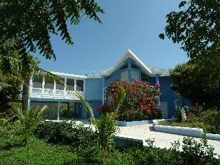 Blue Villa - Spring Into Summer By Grace Bay Beach, Turtle Cove