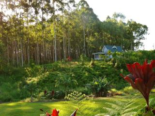 Creekside Cottage with ocean views, 20 acres, Hilo