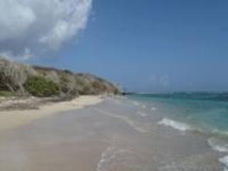 Cruzan Sands Villa! BEACHFRONT! New! Pool! Amazing Views!  Snorkel! Swim! Play!