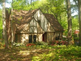 English Tudor 5 BR 4 BA Lakefront Home,Sundeck,.Beach, sleeps 12