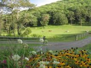 The Barn at On the Windfall Farm