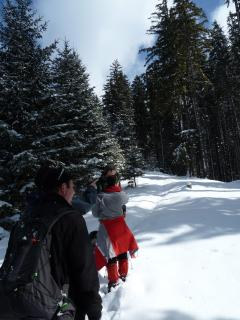 Winter trekking tour