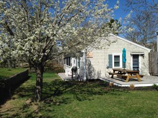 Spacious cottage steps to Cooks Brook Beach! Just four houses from the beach!