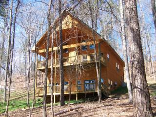 Spacious new home on Lake Hartwell - Sleeps 11, Martin