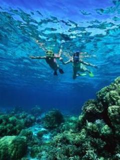 swimming, snorkeling, etc.