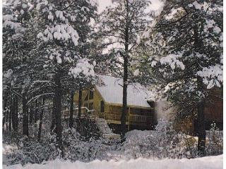 SNOW! SKI NOW! Home in the pines with views, tranqility, privacy -quite location