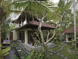 Tranquil Villa near Ubud Bali Plunge Pool & Garden