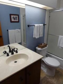 Guest bathroom with new tub, tile shower, counter top, sink, mirror and lighting