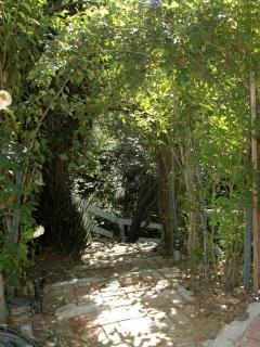 Enjoy one of the numerous woodland walkways