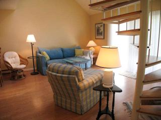 Ocean Edge with King Bed, A/C & Pool (fees apply) - HO0473, Brewster