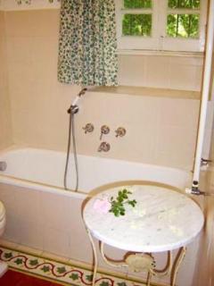 bathroom 1- bathtub with shower