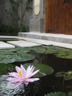 Lotus flower gives the name of the villa