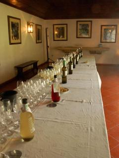 famous fonceca wine tour and tasting only 3kms from the apartment