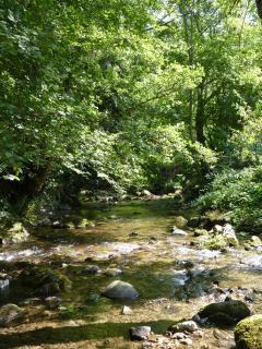 River Arget