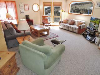 Sunny & Bright Condo in Town Easy Walk Everywhere, Telluride