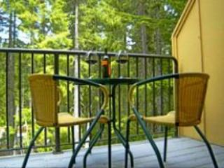 Creekside Chalet- No Cleaning Fee, Winter Deals!