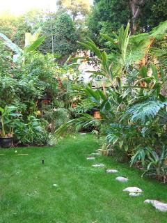 1/3 of Garden