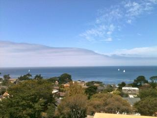 Outstanding Ocean Views-Fab Location-Beautiful !, Pacific Grove