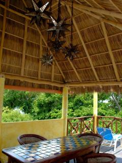 Palapa roof with lights
