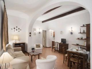 Nice apt in the centre of Florence (Palais Pitti), Florencia