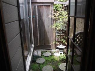 Look to the garden