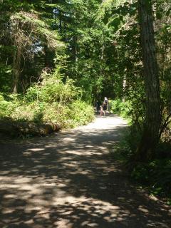 trail to Matheson Lake, fr parking lot