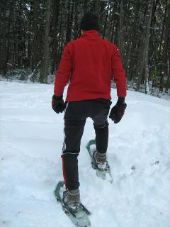 Snowshoeing available for use in summer Mountain bikes in summer
