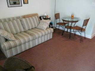 Living room with full size pull out couch