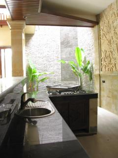 The kitchen counter and cooktop with the interior waterfall in the background.