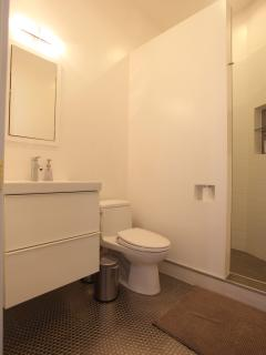 Guest bathroom with shower, fully remodeled.