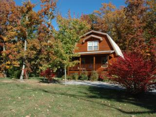 Lookout Mountain cottage, Chestnut Oak