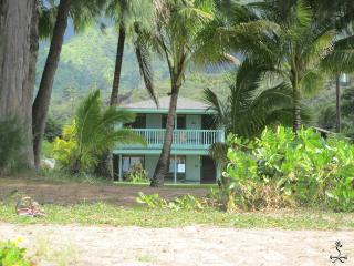 Keone, The Downstairs Beach House, from your lanai, across grass to sand and sea, Hanalei
