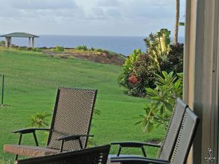 Pa'ani at Princeville