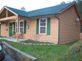 Gatlinburg Cabin, no mtns to climb 3 bedroom