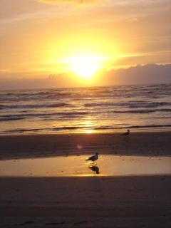 Port Aransas Beach at Sunset