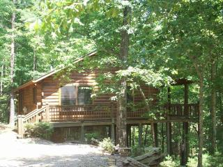 Bear Tracks Log Cabin w/ Private Hot Tub!!!