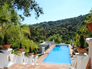 Luxury 7 bedroom Villa Nr Marbella