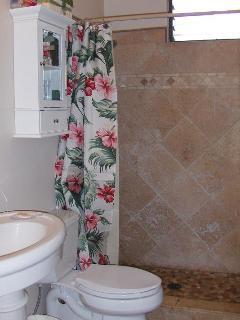 Full Bath - Tiled walk in shower