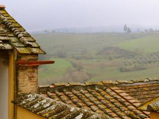 3 bedrooms with garden in the heart of Chianti