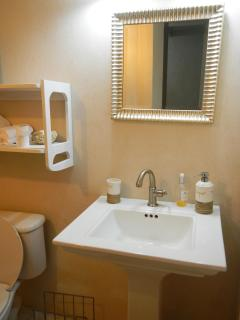 Master Bathroom in the 2 bedroom Ap