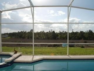 View of forest from the pool deck