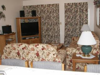 Two bedroom Condo one mile from Silver Dollar City