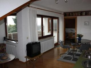Vacation Apartment in Bodolz - 431 sqft, great view, balcony, WiFi (# 2783)